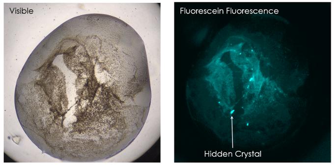 sensitive-crystal-detection