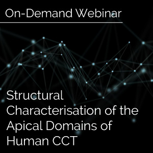 Structural-Characterisation-Of-The-Apical-Domains-Of-Human-CCT